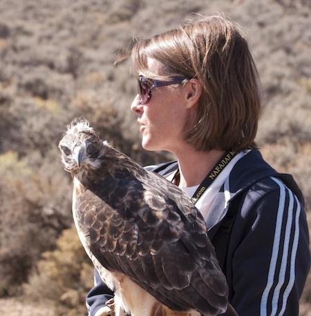 falconer Deanna Curtis