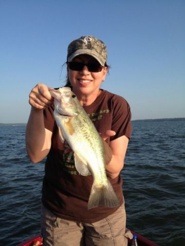 Barb-Baird-bass-knots