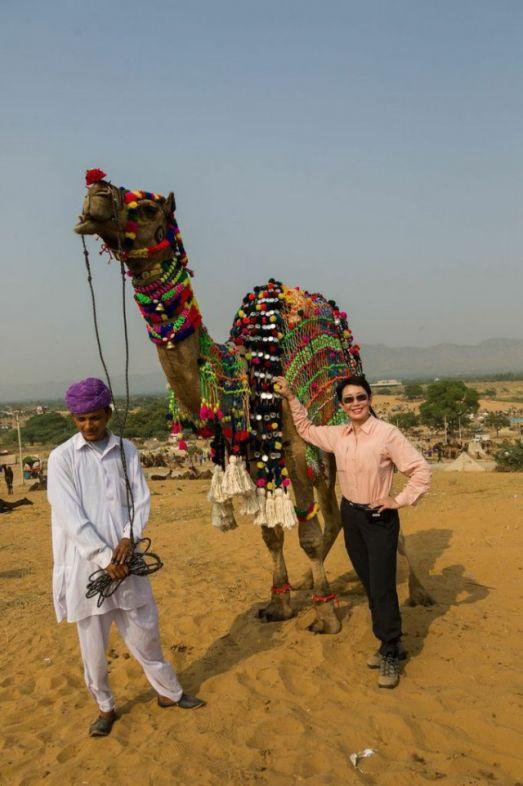 CAMEL By Raymond Chu