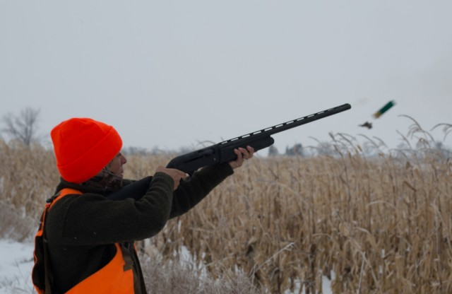 Mia-Remington-V3-pheasant-Sam-Soholt-photo