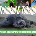 bow-trinidad-tobago