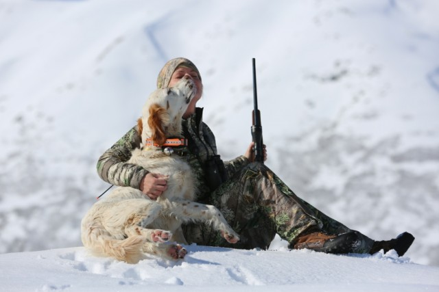 hunting_dog_cogsy_and_cc