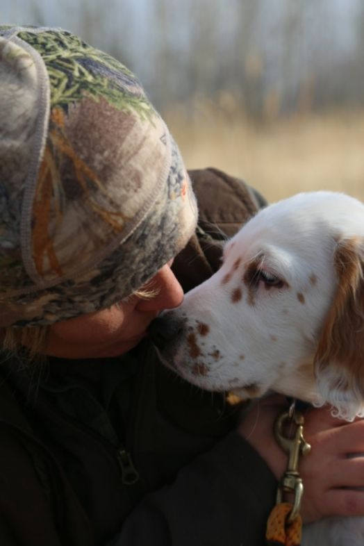 hunting_dog_cogsy_and_cc_3