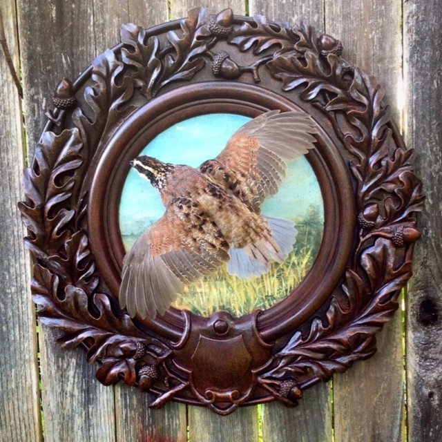 Heritage-Game-Mounts-Victorian-Taxidermy-Quail
