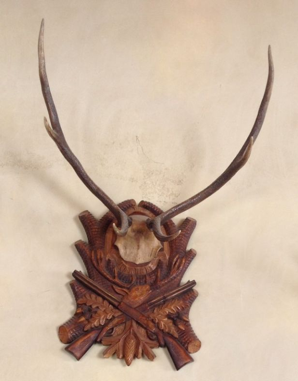 Heritage-Game-Mounts-Victorian-Taxidermy-black-forest