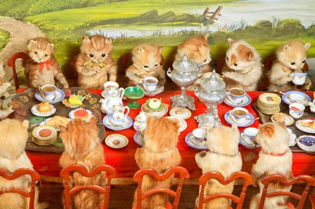 Heritage-Game-Mounts-Victorian-Taxidermy-kitten- taxidermy
