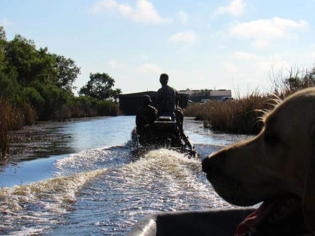 airboat-la-marsh