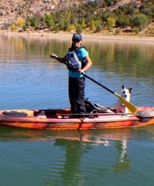 Pelican-paddle-pet