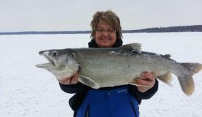 Bonnie-Lake-trout-720x420