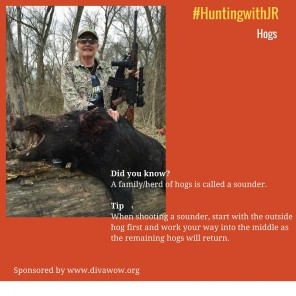 #HuntingwithJR-hogs2