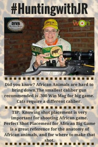 Hunting-Tip-African-Judy-DivaWOW-Gun-caliber