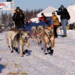 kristy-berington-dog-musher