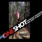 TN-GOV-OneShot