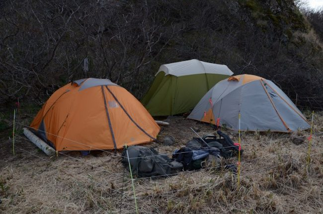 camping-wilderness-tents