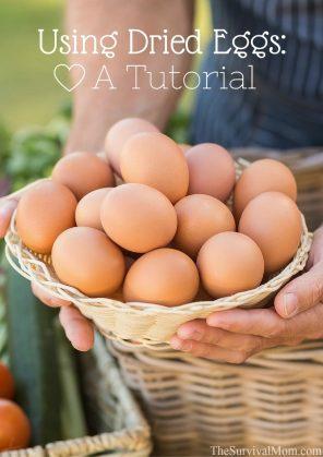 Dried-Eggs-