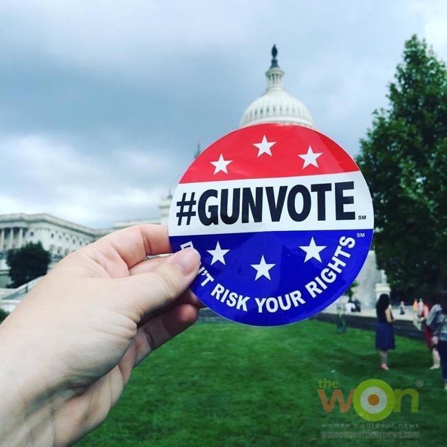 #gunvote Second Amendment GUNVOTE