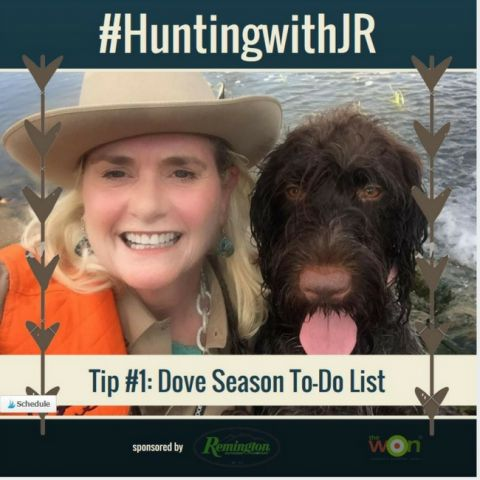 huntingwithJR-Tip1-Dove