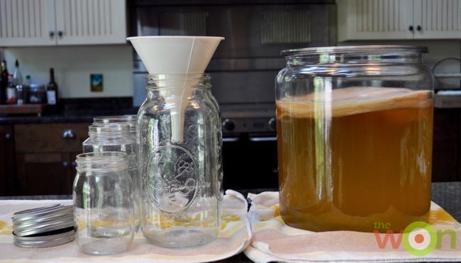 kombucha-tea-setup-cerino
