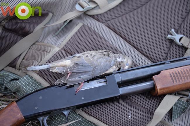 marjorie-dove-hunt-7