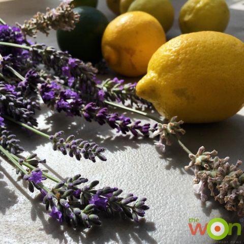 lavender_lemons