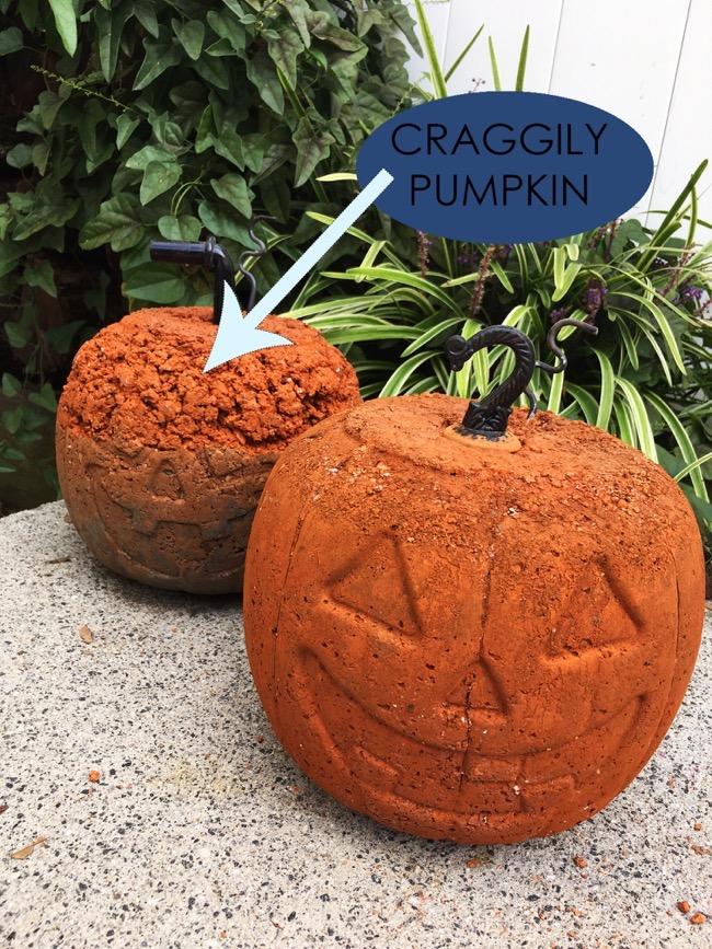 craggily pumpkin concrete