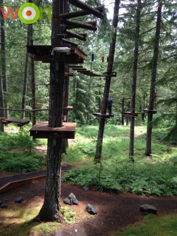 3obsticle_course-casey-zip-line