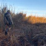 hollis-duck-hunt-walking