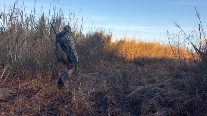 hollis-duck-hunt-walking-Duck Season