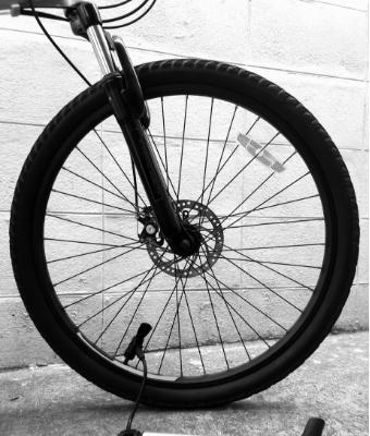 fat-tire bike feature