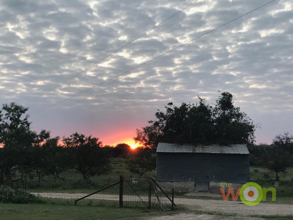 Wildlife Systems Texas San Angelo sunrise