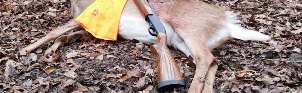 Kat-Deer