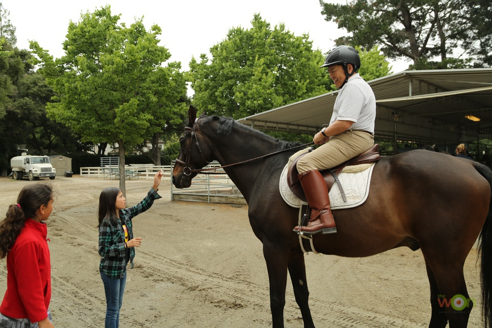 carlos-Koo-horse Outdoor Sports