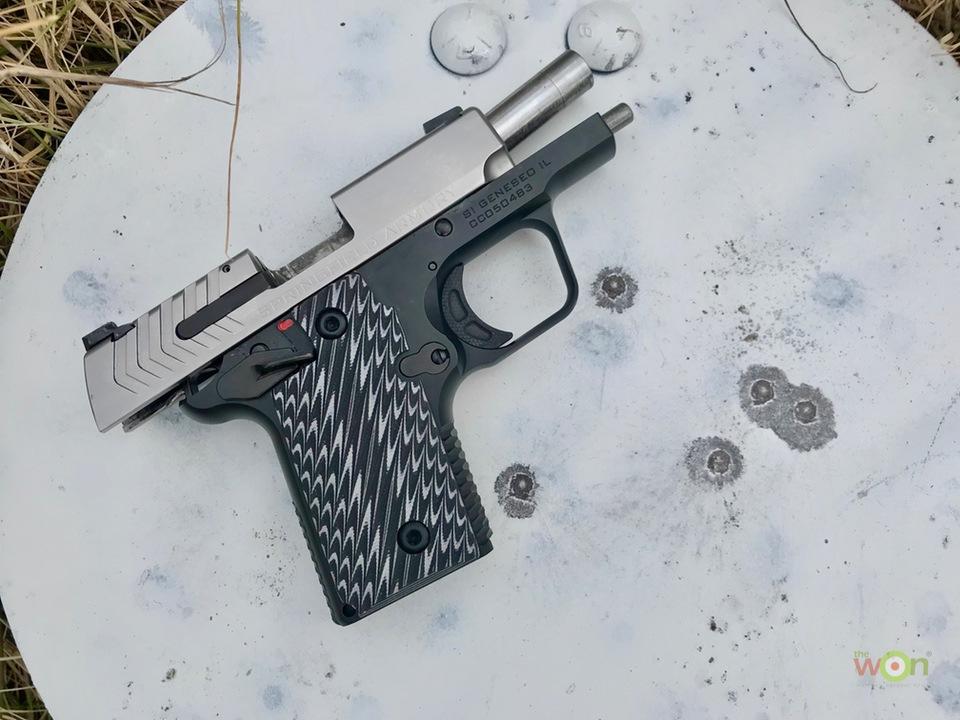 911-steel-target-cerino Springfield Armory 911