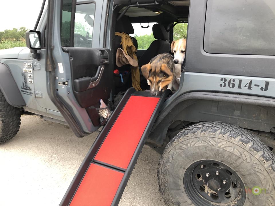 Extreme-Terrain-Kurgo-Pet-Ramp-Dog1-Jump Pet Ramp