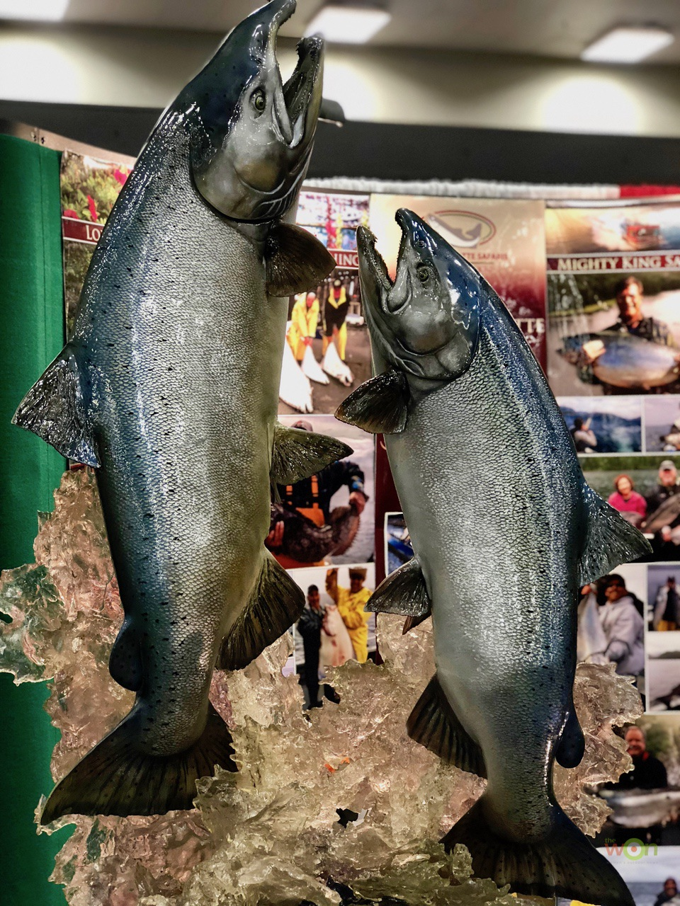 FISH-NRA-Cerino
