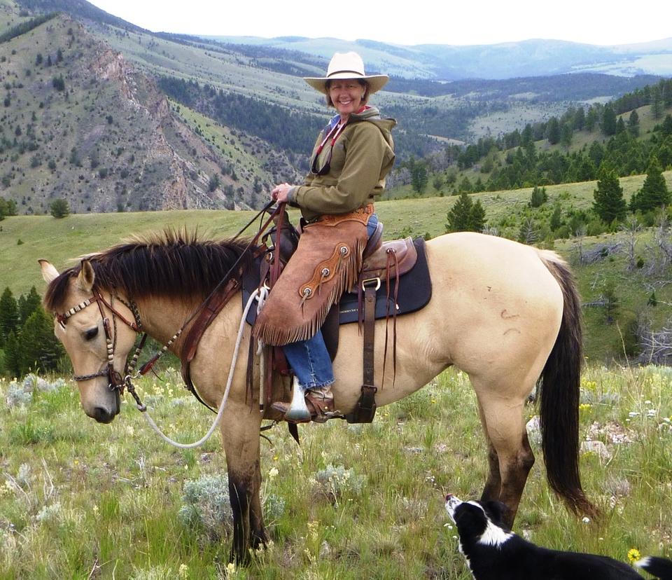 My horse Calamity Jane