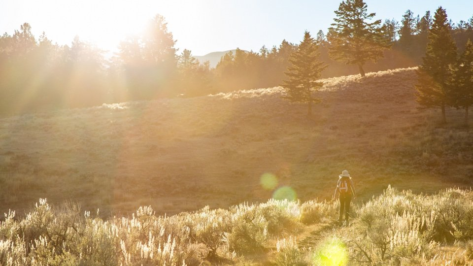 Yellow stone park NPS National Park Foundation