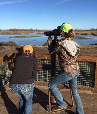 Duck Hunting feature