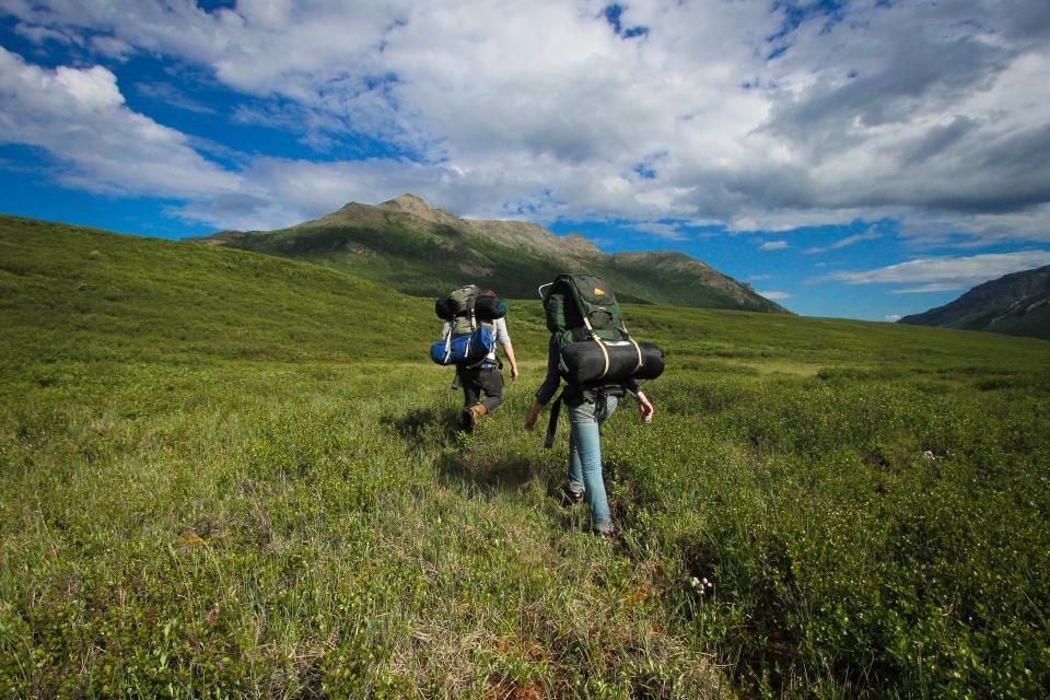 denalinpp_backpackers-alpine-meadow_alex-vanderstuyf_nps