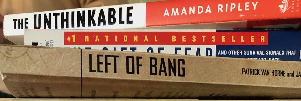 Mindset books cerino