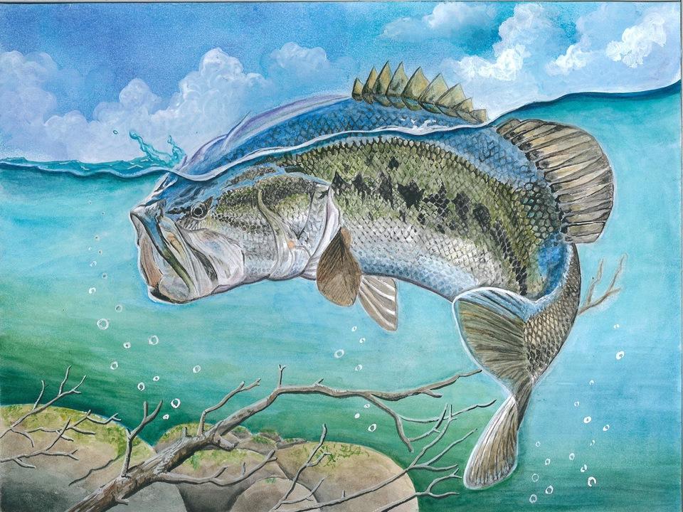 State-Fish art