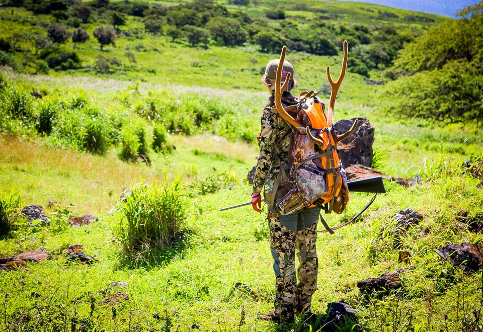 Axis Deer Hunting in Hawaii 2