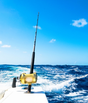 SaltWater fishing tips feature