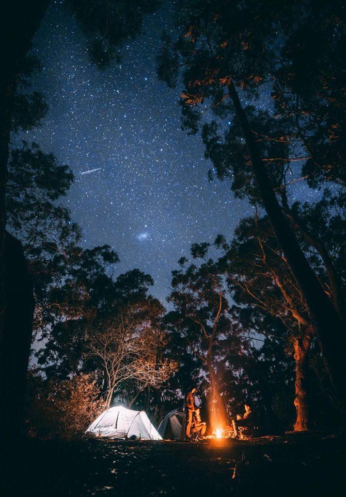 adult campfire activities  Stargazing
