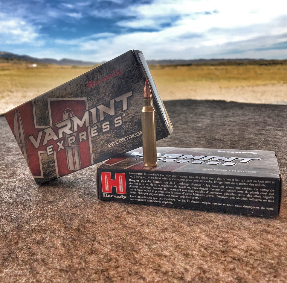 Hornady Varmint Express 55 grain in .223 Remington