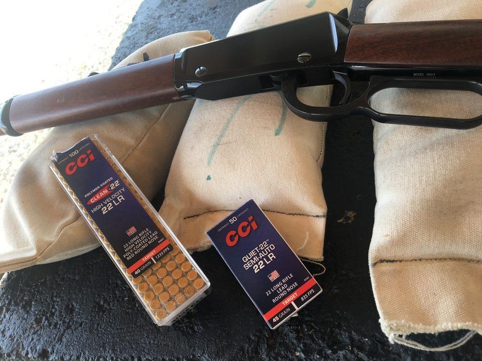 .22 ammo