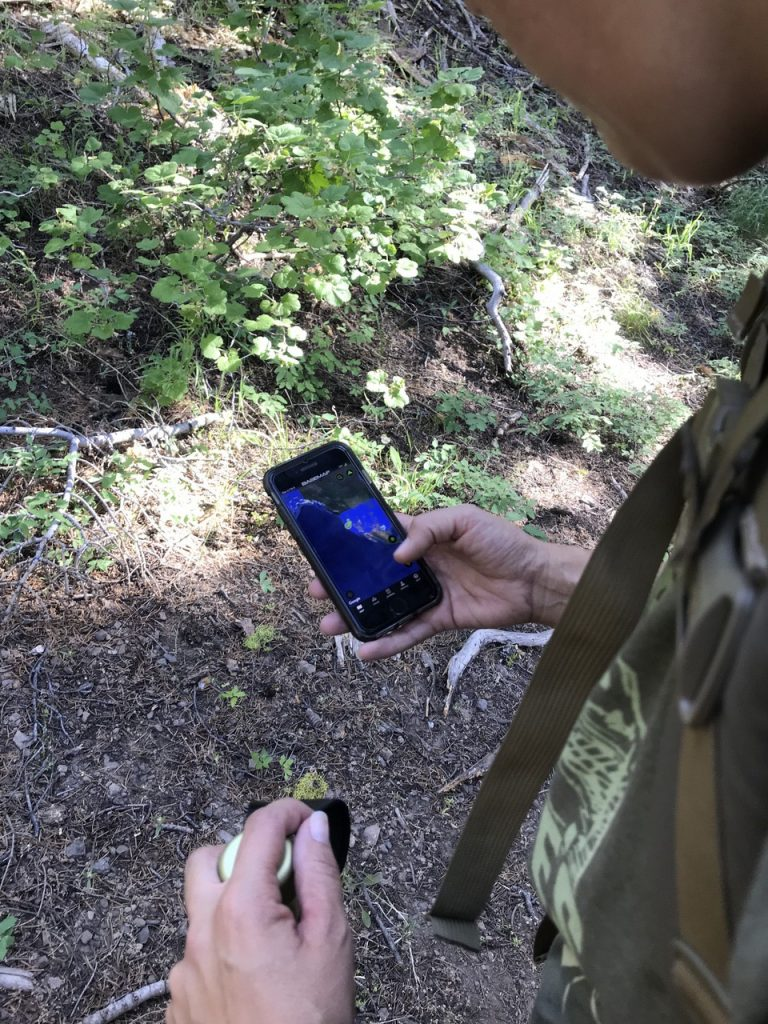 Tips for Finding the Perfect Hunting Spot and Scouting e-scoutin