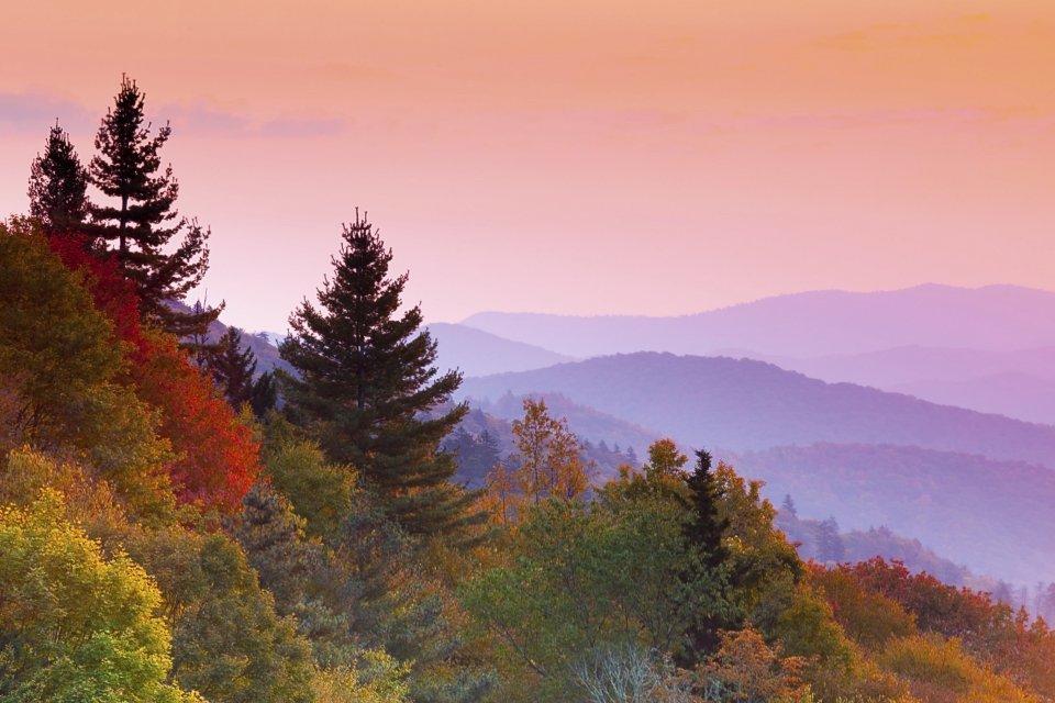 National Park Foundation Leaf Peep GREAT SMOKY MOUNTAINS