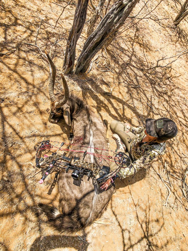 Archery Hunting in South Africa Bowhunting