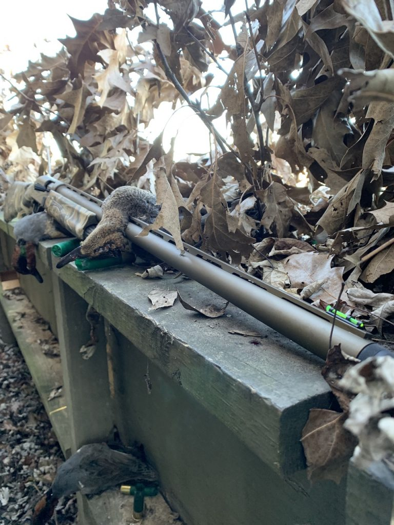 Remington Waterfowl V3 Duck Hunt